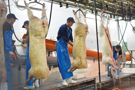 abattoir workers2