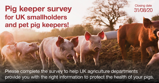 ASF smallholder survey
