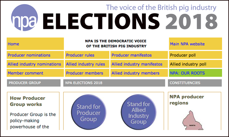 NPA election website